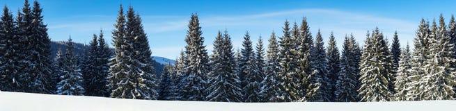 Υπαίθριο υπόβαθρο τοπίων χειμερινής φύσης χιονώδες Στοκ Φωτογραφίες