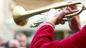 Υπαίθριο Trumpeter απόθεμα βίντεο