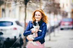 Υπαγόμενα άτομο και σκυλί η νέα κοκκινομάλλης καυκάσια γυναίκα με τις φακίδες στο πρόσωπο κρατά το γραπτό δασύτριχο σκυλί φυλής c στοκ φωτογραφία με δικαίωμα ελεύθερης χρήσης