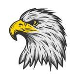 Υπερήφανο κεφάλι αετών Έκδοση χρώματος Στοκ Φωτογραφία