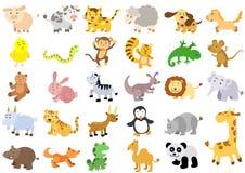 Υπερβολικά μεγάλο σύνολο ζώων Στοκ εικόνες με δικαίωμα ελεύθερης χρήσης