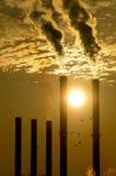 Υπερθέρμανση του πλανήτη και κοπάδι των πουλιών Στοκ Εικόνα