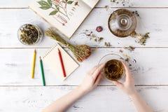 Υπερυψωμένη άποψη των διάφορων ειδών του τσαγιού Αρωματικό με τα ανάμεικτα χορτάρια, ένα μήλο, αυξήθηκε με teapot και μια φλυτζάν Στοκ φωτογραφίες με δικαίωμα ελεύθερης χρήσης