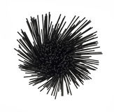 Υπερυψωμένη άποψη των μαύρων μακαρονιών μελανιού καλαμαριών Στοκ φωτογραφία με δικαίωμα ελεύθερης χρήσης