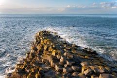 Υπερυψωμένο μονοπάτι γιγάντων στη Βόρεια Ιρλανδία Στοκ φωτογραφίες με δικαίωμα ελεύθερης χρήσης