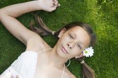 υπερυψωμένο picnic πορτρέτο Στοκ εικόνες με δικαίωμα ελεύθερης χρήσης