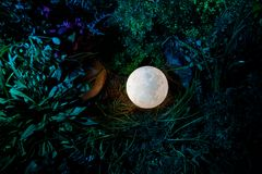Υπερφυσική έννοια φαντασίας - πανσέληνος που βρίσκεται στη χλόη Διακοσμημένη φωτογραφία Αφηρημένα υπόβαθρα νεράιδων Στοκ φωτογραφίες με δικαίωμα ελεύθερης χρήσης