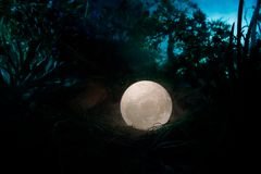 Υπερφυσική έννοια φαντασίας - πανσέληνος που βρίσκεται στη χλόη Διακοσμημένη φωτογραφία Αφηρημένα υπόβαθρα νεράιδων Στοκ Εικόνα