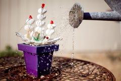 Υπερφυσική ανάπτυξη σκαφών παιχνιδιών Flowerpot στοκ φωτογραφία με δικαίωμα ελεύθερης χρήσης