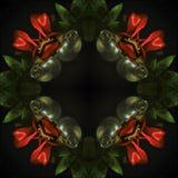 Υπερφυσικό τετραγωνικό σχέδιο - κόκκινα τριαντάφυλλα σε ένα μαύρο υπόβαθρο στοκ εικόνες