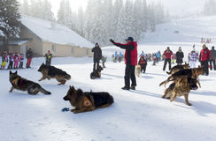 Υπηρεσία διάσωσης βουνών Στοκ Φωτογραφία