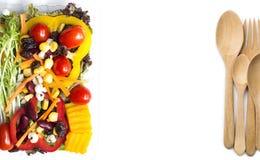 Υπηρεσία παράδοσης τροφίμων: Εκφράστε την έννοια παράδοσης για το επιχειρησιακό foo στοκ εικόνες