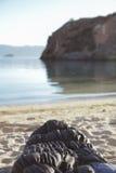 Υπνόσακος στην παραλία Στοκ εικόνες με δικαίωμα ελεύθερης χρήσης
