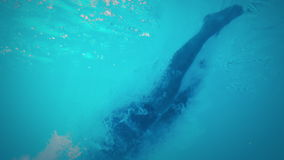 Υποβρύχια άποψη του αθλητικού ατόμου που βουτά στην πισίνα απόθεμα βίντεο