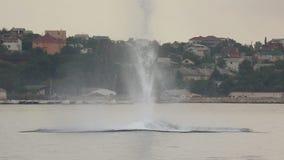 Υποβρύχια έκρηξη απόθεμα βίντεο