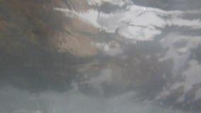 Υποβρύχια κύματα θάλασσας φιλμ μικρού μήκους