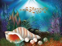 Υποβρύχια παγκόσμια κάρτα με το θαλασσινό κοχύλι και τα μαργαριτάρια ελεύθερη απεικόνιση δικαιώματος