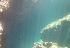 Υποβρύχια περιέργεια στοκ φωτογραφίες με δικαίωμα ελεύθερης χρήσης