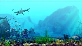 Υποβρύχια σκηνή ενυδρείων Ο καρχαρίας κολυμπά Ρεύμα των ψαριών Τρισδιάστατη απόδοση CG απόθεμα βίντεο