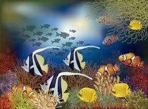 Υποβρύχια ταπετσαρία με τα τροπικά ψάρια, διάνυσμα Στοκ Εικόνες