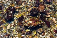 Υποβρύχιοι βράχοι αντανακλάσεων Στοκ Φωτογραφία
