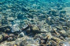 Υποβρύχιοι βράχοι στην τυρκουάζ θάλασσα Στοκ φωτογραφία με δικαίωμα ελεύθερης χρήσης