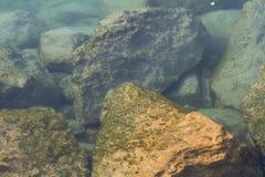 Υποβρύχιοι βράχοι Στοκ Φωτογραφίες