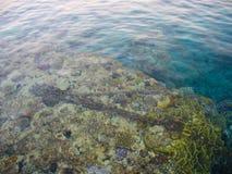 Υποβρύχιοι σκόπελος και αλυσίδες Στοκ φωτογραφίες με δικαίωμα ελεύθερης χρήσης