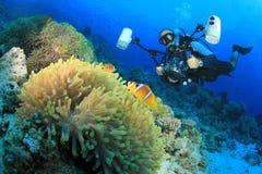 Υποβρύχιοι φωτογράφος και Clownfish Στοκ Εικόνες