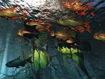 υποβρύχιος Στοκ φωτογραφία με δικαίωμα ελεύθερης χρήσης