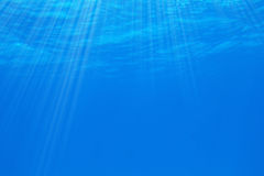 υποβρύχιος Στοκ Εικόνα