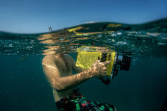 υποβρύχιο με ραβδώσεις volitans Ερυθρών Θαλασσών pterois φωτογραφιών ψαριών Στοκ εικόνα με δικαίωμα ελεύθερης χρήσης