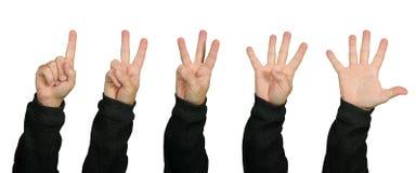 Υπολογισμός με τα δάχτυλα στοκ φωτογραφία με δικαίωμα ελεύθερης χρήσης