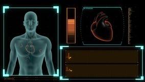 Υπομονετική ανίχνευση που επιδεικνύει το ποσοστό καρδιών και το καρδιογράφημα ελεύθερη απεικόνιση δικαιώματος