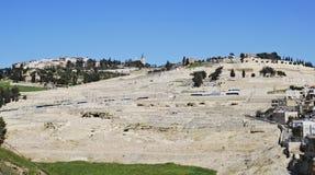 Υποστήριγμα των ελιών, Ιερουσαλήμ Ισραήλ Στοκ Εικόνες