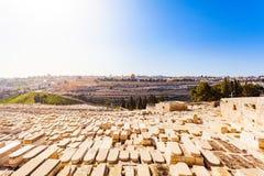 Υποστήριγμα των ελιών και το παλαιό εβραϊκό νεκροταφείο στην Ιερουσαλήμ, Ισραήλ Στοκ Φωτογραφία