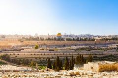 Υποστήριγμα των ελιών και το παλαιό εβραϊκό νεκροταφείο στην Ιερουσαλήμ, Ισραήλ Στοκ φωτογραφία με δικαίωμα ελεύθερης χρήσης