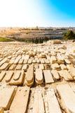Υποστήριγμα των ελιών και το παλαιό εβραϊκό νεκροταφείο στην Ιερουσαλήμ, Ισραήλ Στοκ φωτογραφίες με δικαίωμα ελεύθερης χρήσης