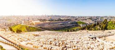 Υποστήριγμα των ελιών και το παλαιό εβραϊκό νεκροταφείο στην Ιερουσαλήμ, Ισραήλ Στοκ Φωτογραφίες