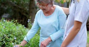 Υποστήριξη γιατρών στην ανώτερη γυναίκα ενώ σχετικά με τα φύλλα 4k φιλμ μικρού μήκους