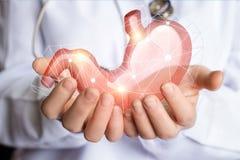 Υποστήριξη και προσοχή του ανθρώπινου στομαχιού Στοκ Φωτογραφία