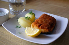 υποστηριγμένος σολομός ψαριών Στοκ Εικόνα