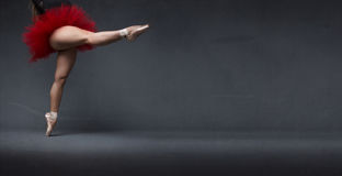 Υποδεδειγμένο Ballerina διάστημα με το σημείο στοκ εικόνες με δικαίωμα ελεύθερης χρήσης