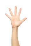 Υπολογισμός χεριών δάχτυλα πέντε απομονωμένος στοκ φωτογραφίες