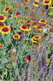 Υποδοχή, μέλισσες! Στοκ φωτογραφία με δικαίωμα ελεύθερης χρήσης