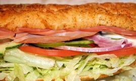 Υπο- σάντουιτς με τα ανάμεικτα κρέατα και Veggies Στοκ εικόνες με δικαίωμα ελεύθερης χρήσης
