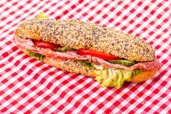 Υπο- σάντουιτς σαλαμιού Στοκ Εικόνες