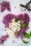 Υπόβαθρα άνοιξη, καρδιά-διαμορφωμένη πασχαλιά, ψαλίδι κήπων στοκ εικόνα με δικαίωμα ελεύθερης χρήσης