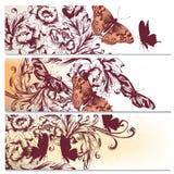 Υπόβαθρα που τίθενται όμορφα με τα λουλούδια Στοκ Εικόνες