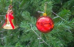 Υπόβαθρα χριστουγεννιάτικων δέντρων Στοκ εικόνες με δικαίωμα ελεύθερης χρήσης